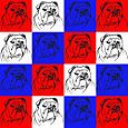 Bulldog Pattern1