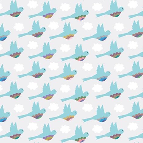 Birds Clouds