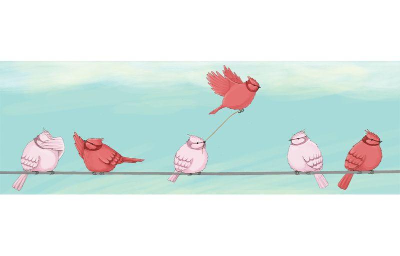 Bryony-Crane-Birds-Spread-Large