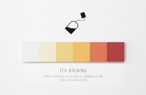 Teabrewing_web_900