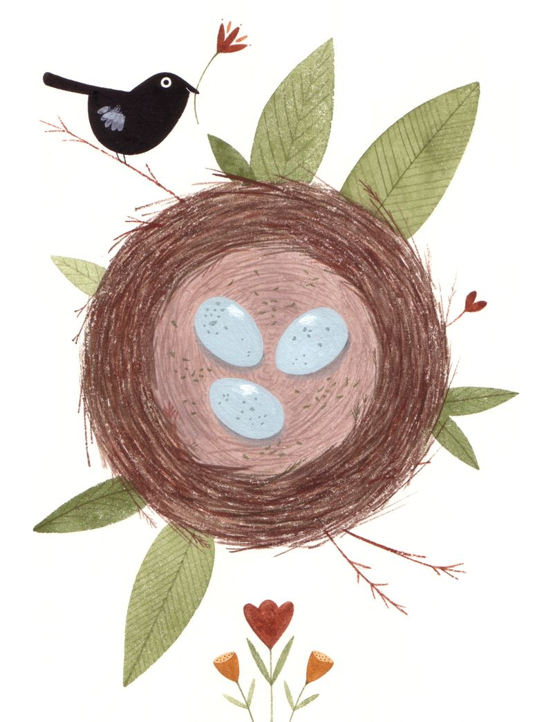 C_pym_nest_and_bird