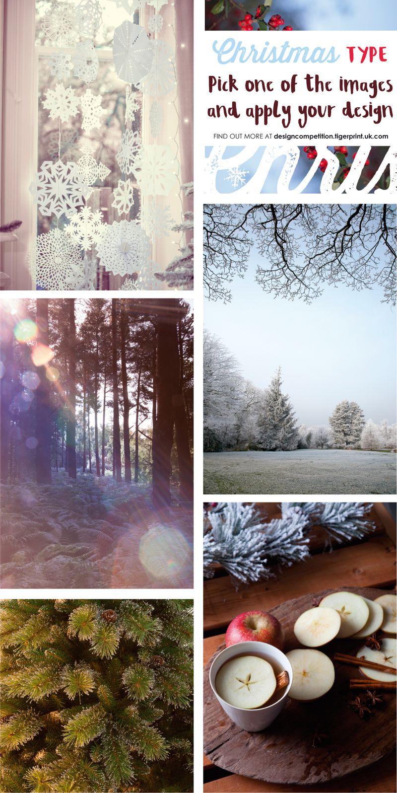 Photography_XmasTypeComp