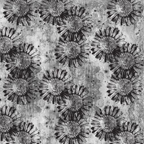 Black daisies 72dpi